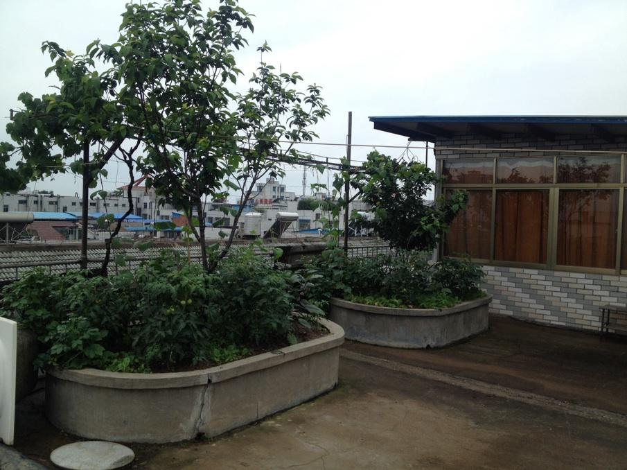 鹏程小区顶楼带私家花园110平