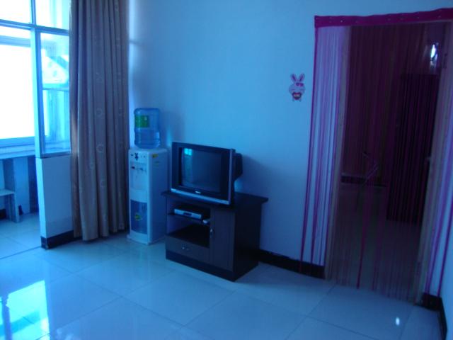全新豪华装修一室一厅公寓出租