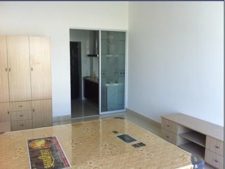 文鼎公寓全新豪华装修、全新家电、全新家具!