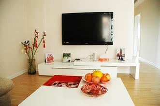 阳光都市公寓 53平 1室1厅 精致装修 超级便宜
