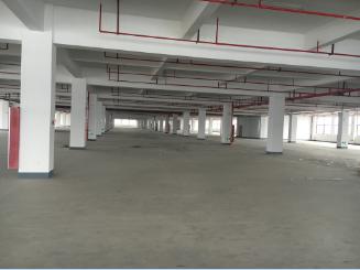四海大道与香溪路交叉口 陆港物流园区内 厂房出租