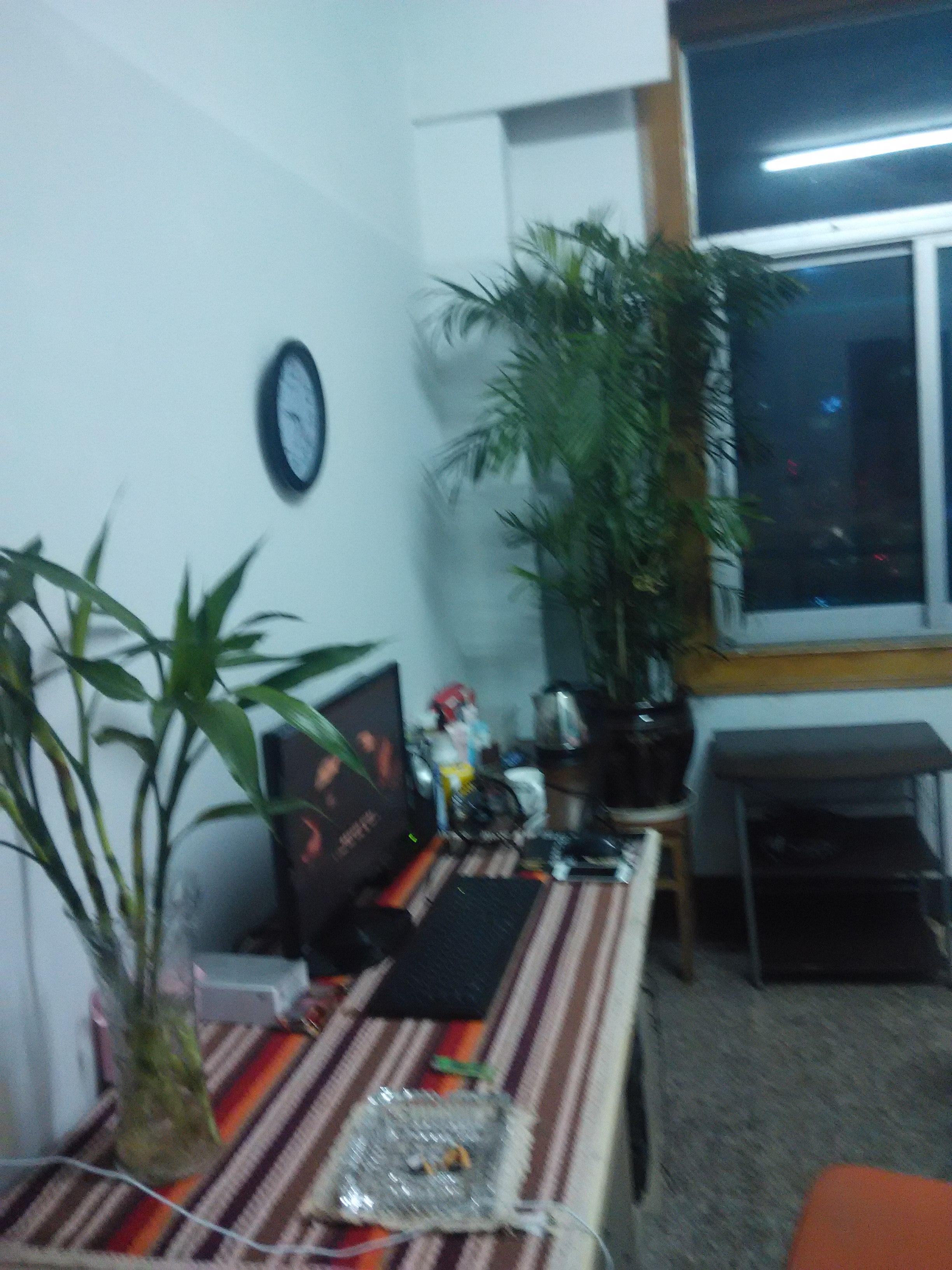 农贸城附近安静舒适和谐全套设施公寓