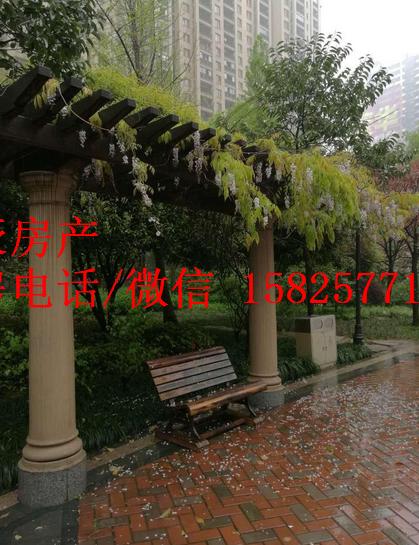 欧景名城 万达广场边 大户型景观房  精装修 家电齐全