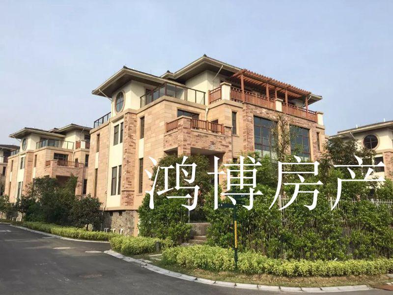 【鸿博--紫荆庄园双拼别墅】纯毛坯 可更名 仅288万