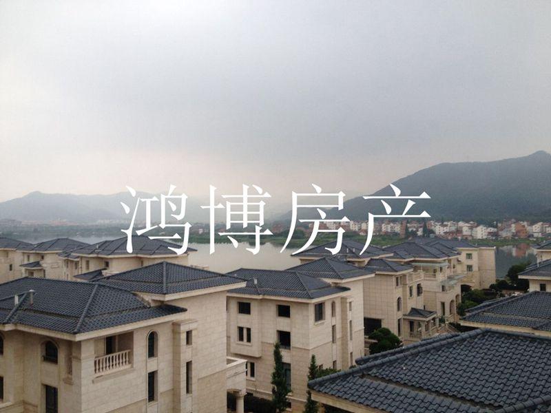【鸿博--黎明湖别墅】稀缺湖山景观 更名免税 仅售988万