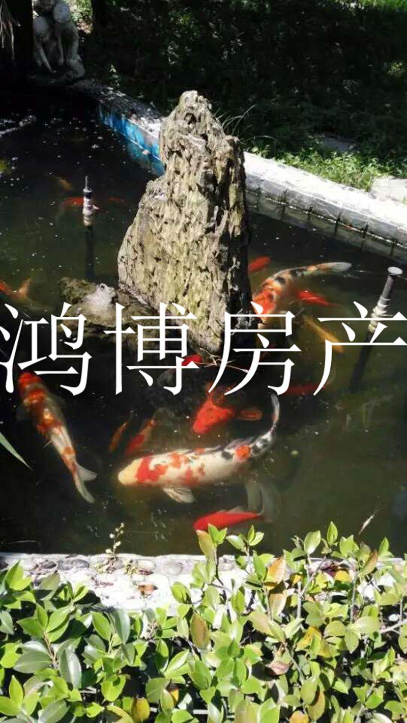 【鸿博--幽香庭院别墅】最中心楼王位置 湖景房 精装仅此一栋
