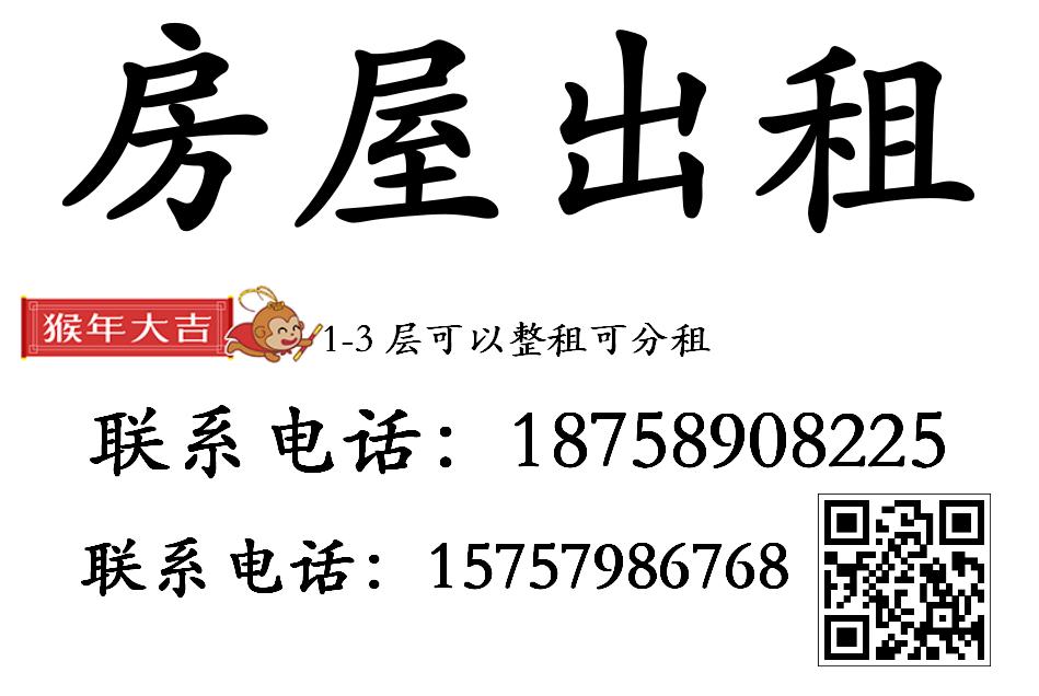 旧村改造4间三层排屋出租 徐樟塘村