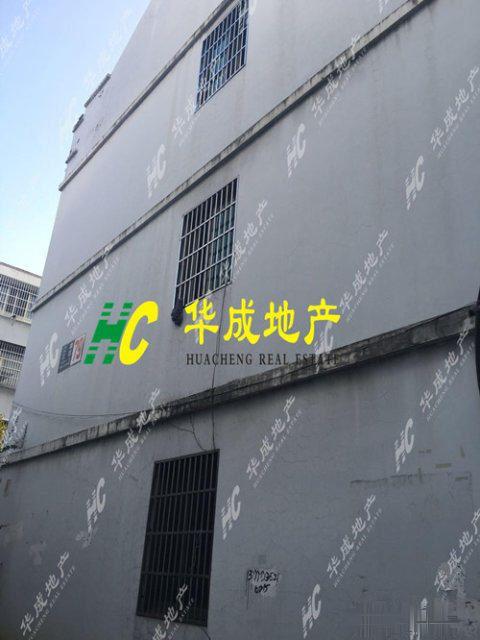 江东江南三区5室5厅3卫298�O