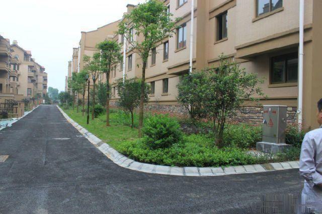 【象征不动产】都市豪园297平带27平车库前后带花园140万