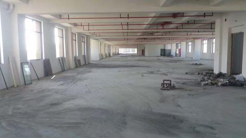 出租金东区经济开发区厂房