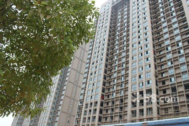 紫荆公寓证件齐全首付20%