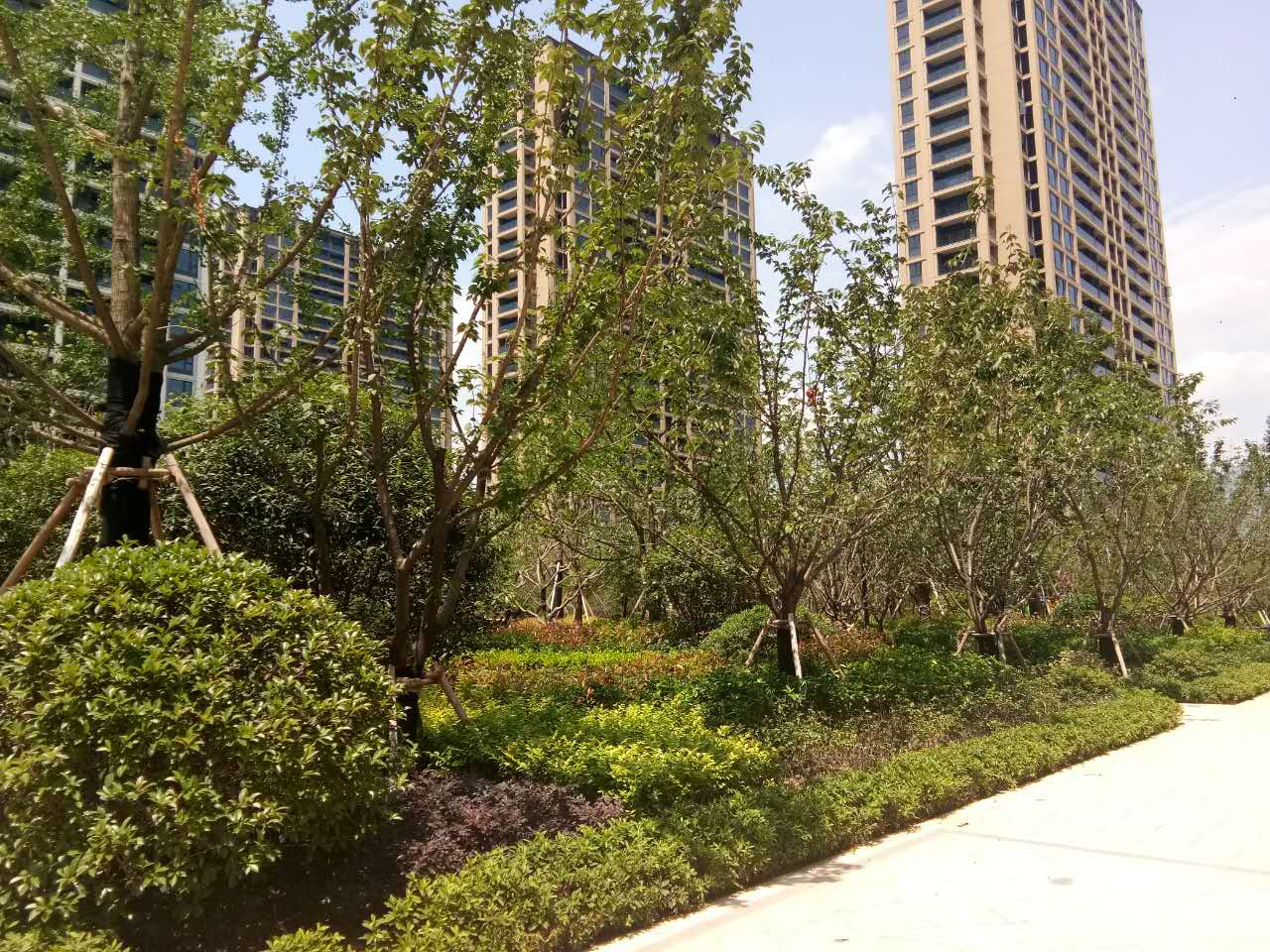金麟花园70-105-140-170平近期成交20套
