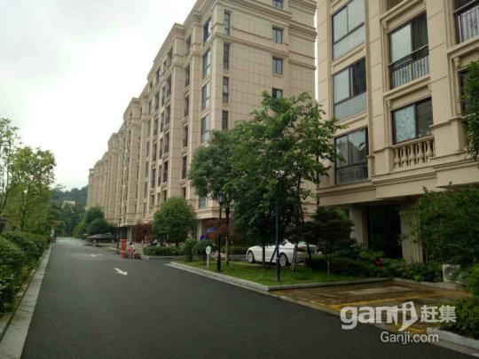 义乌大陈山水御墅,全新白坯,环境好,到城区半小时。