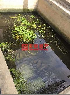 【亚和200%真房源】赵宅小区11平243万宾王双学区带露台