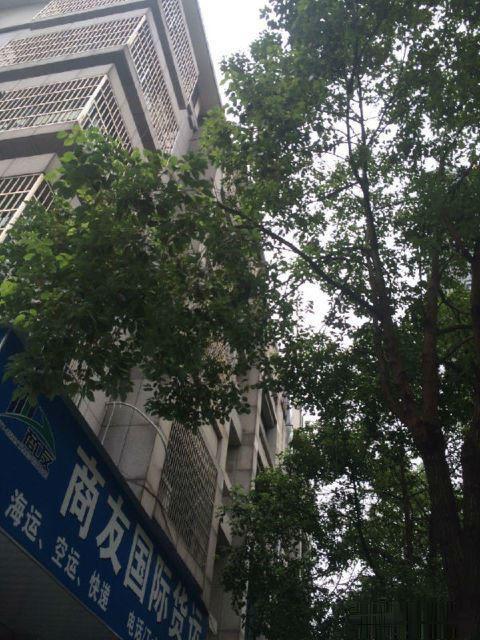 宾王夜市三挺路4间店面垂直房已出让年租金85万手慢无