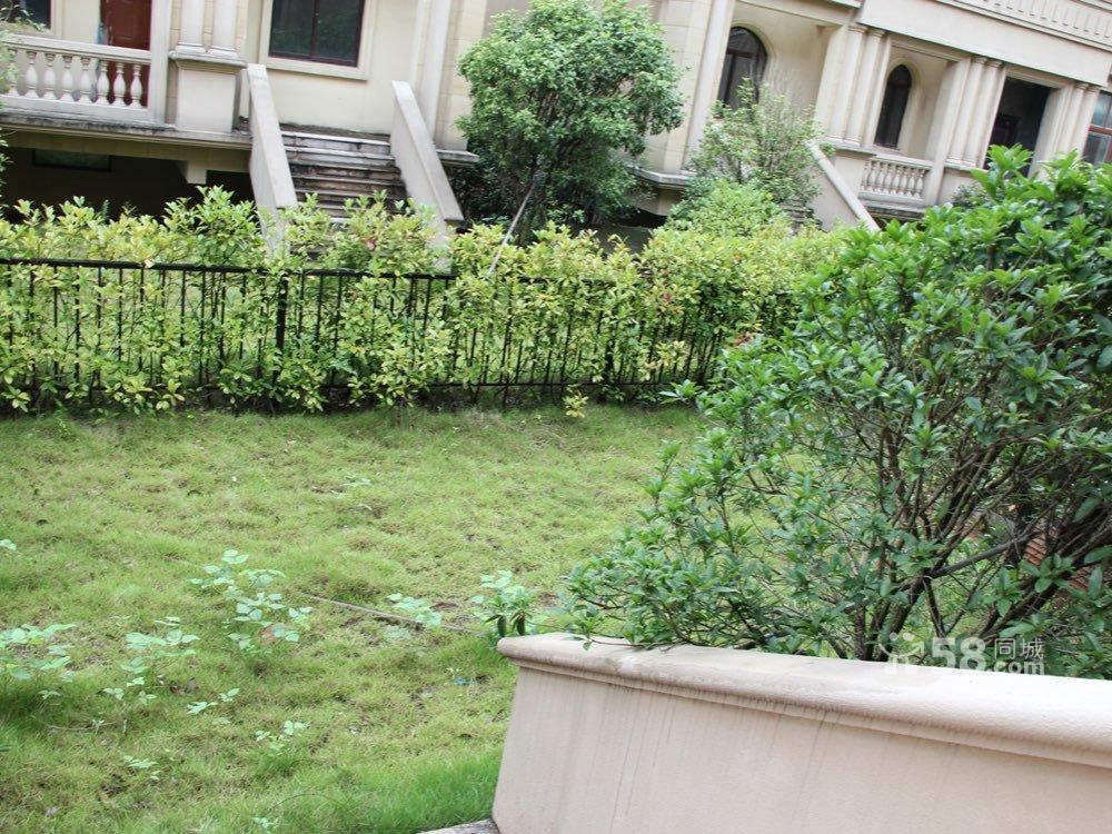 海德庭院排屋  空中大花园 证齐可按揭