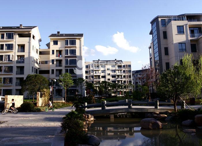 金桥人家市场上最低价的一套小区中间位置