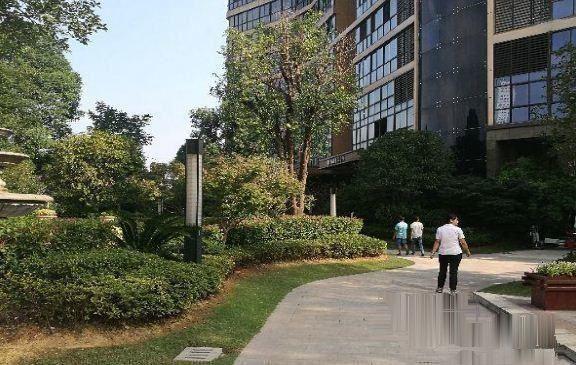 江东梅湖公馆,还有多套未出售,好房子不等人急售