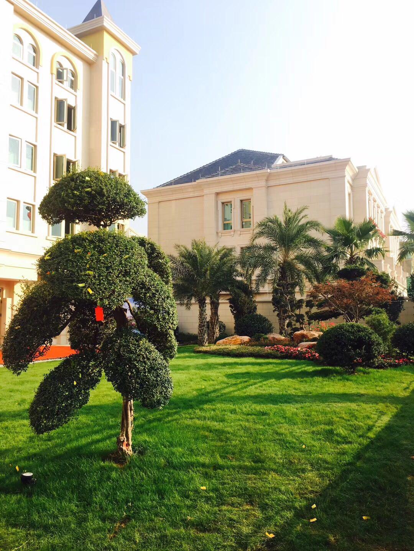 义乌法式江景别墅,环境优雅,低调奢华。