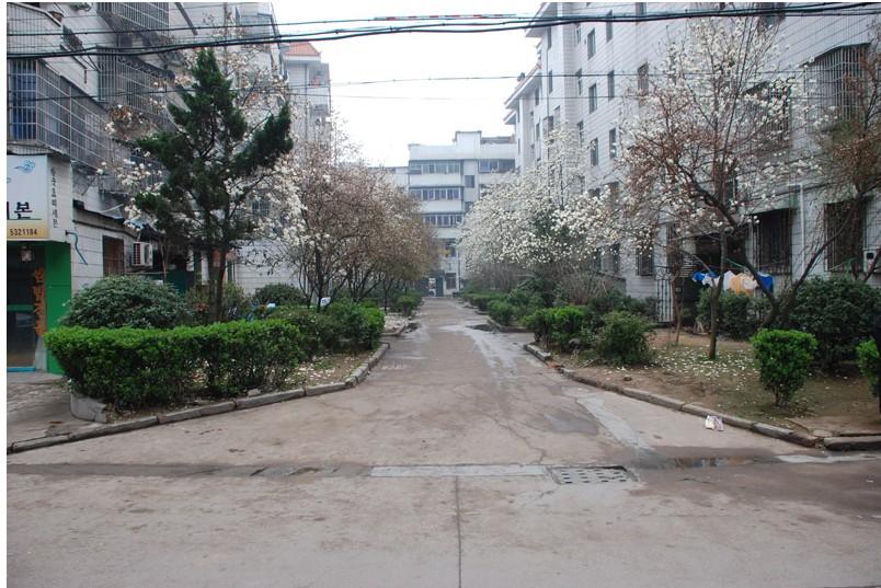 鹏城小区黄金楼层出让满2套房出售开发区学校