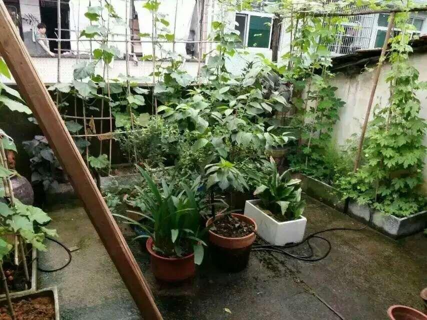 宾王双学区小户型房50+50平120万诚售 送大露台