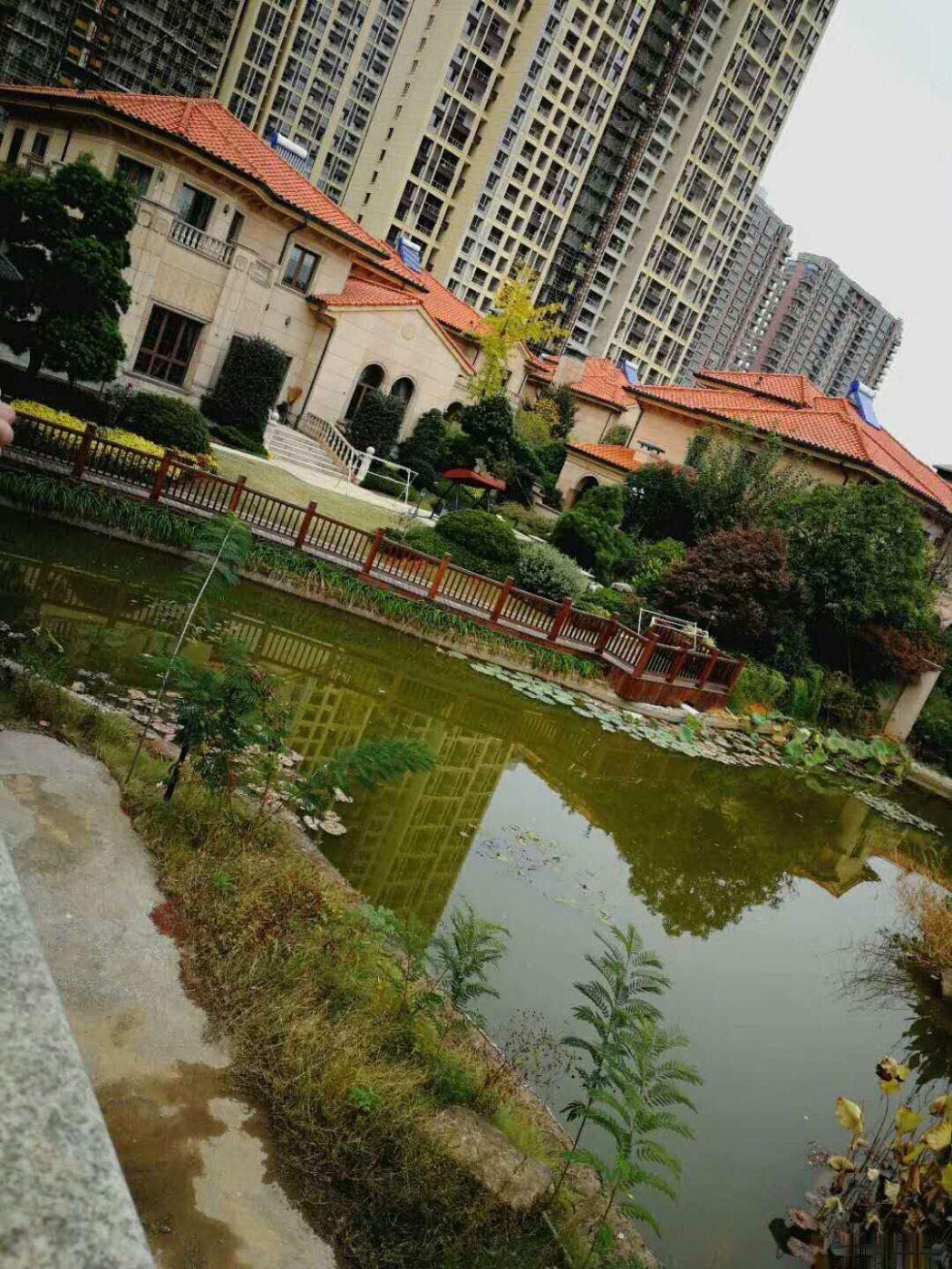 龙庭一品 金义都市新区 有天有地独栋别墅占地550平米