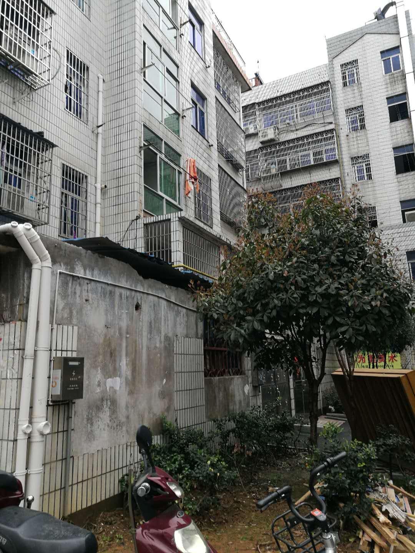 鹏城住宅垂直楼两间6层占地88平建筑518平诚心出售