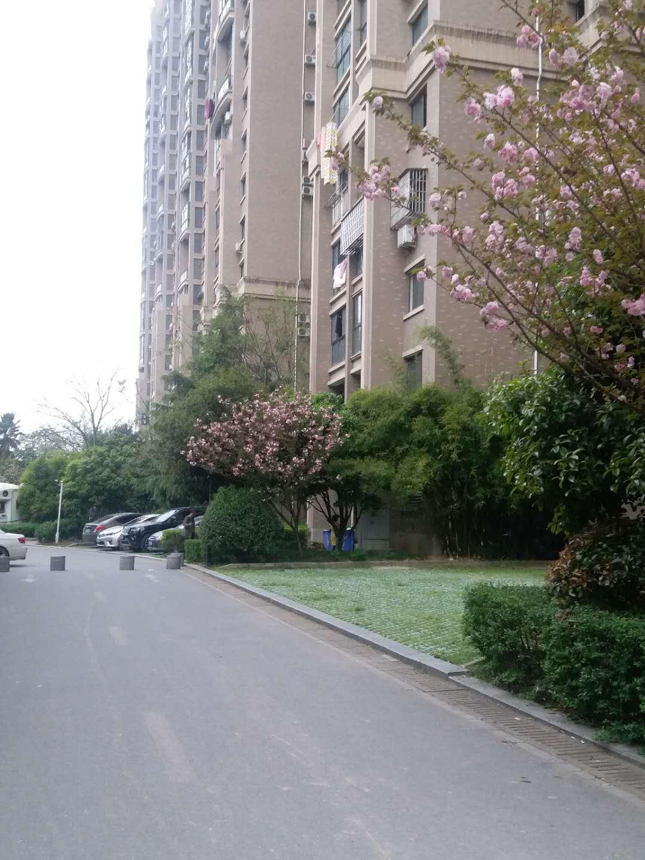廿三里皇冠花园小区高层公寓