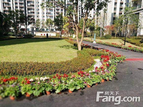 义乌城北商业中心一手房,均价1.5万起,首付3层,看房接送
