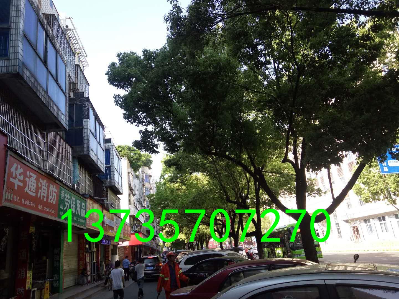 香山路沿街店面垂直房 1间3层半 证齐全 实用190平