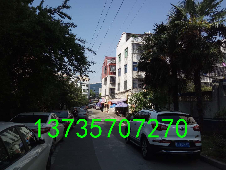 义乌南方联边垂直房 带院子2间4层半带露台 使用330平
