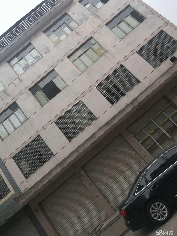 东阳五马塘夜市垂直楼 地理位置好 占地4间六层 带地下室带院