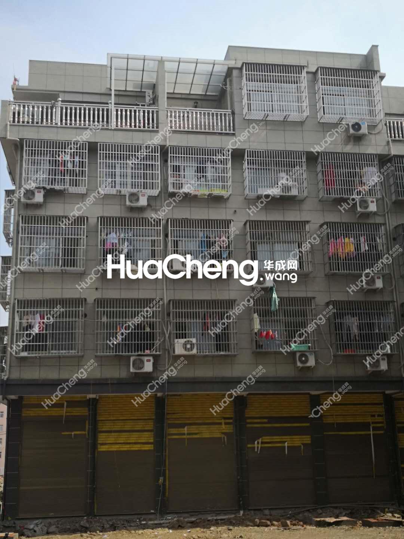 北苑柳青三区 全新垂直楼 产权清晰 随时过户 房东很诚心卖