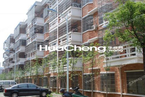 北苑丹桂苑 大三房 大露台 简装 1.4万/平米 商业齐全
