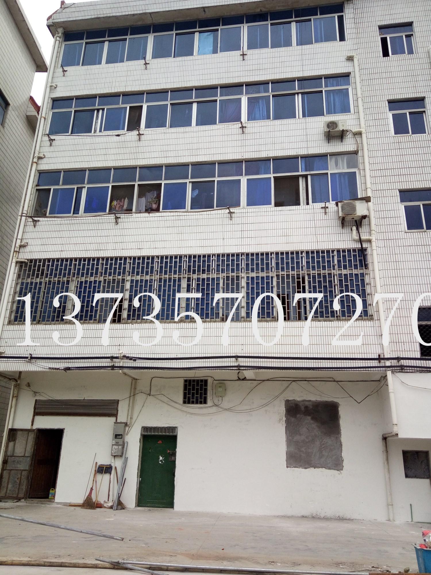城北路垂直房 3间5层 占地137平已出让确权766平边套