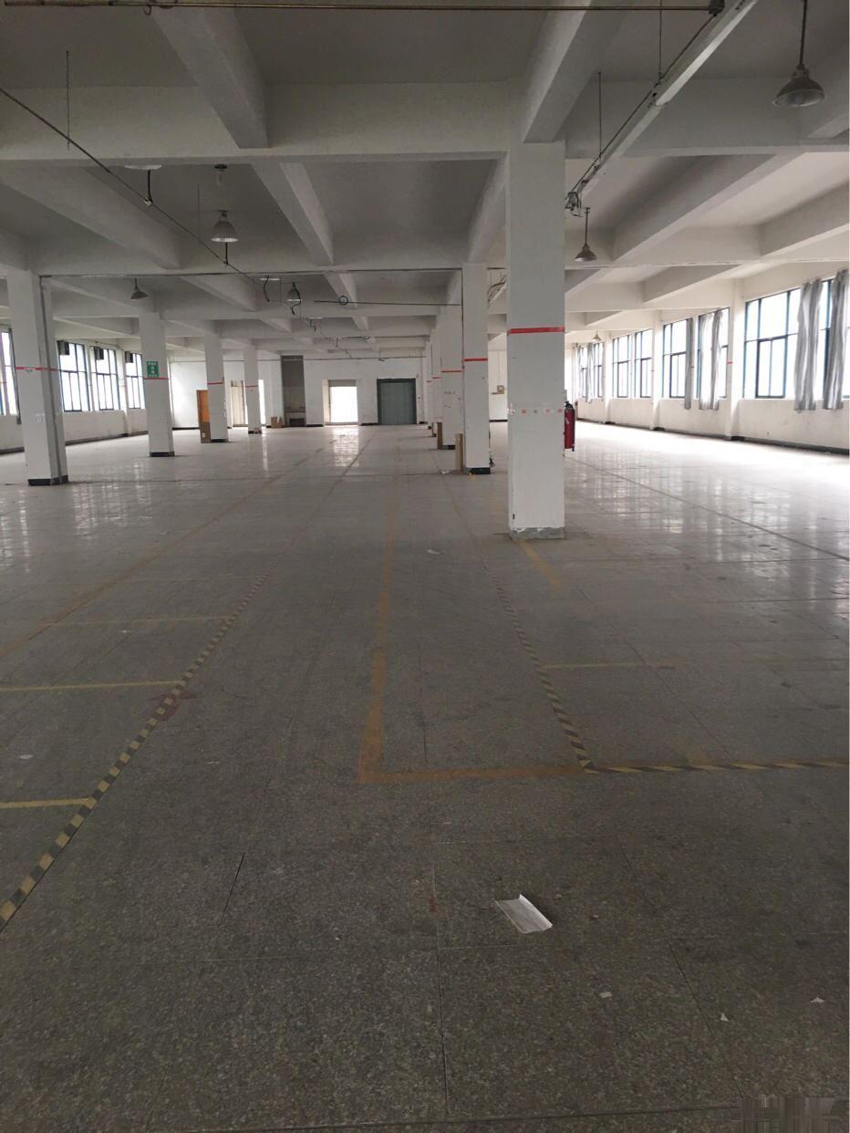 1500平2楼3千平可分租无税收要求B类义亭一楼标准厂房出租