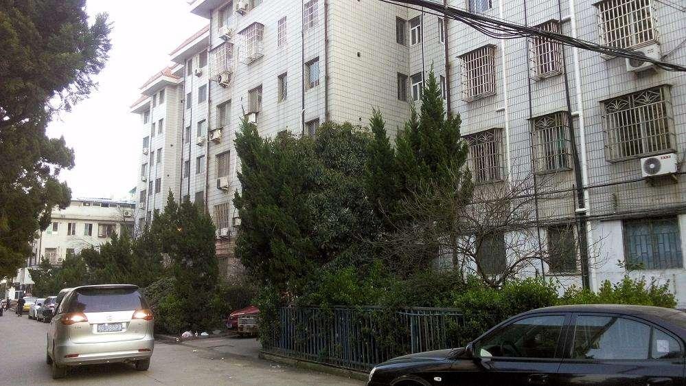 稠江鹏城小区 顶楼带露台 精装修 视野好 楼层好 采光好