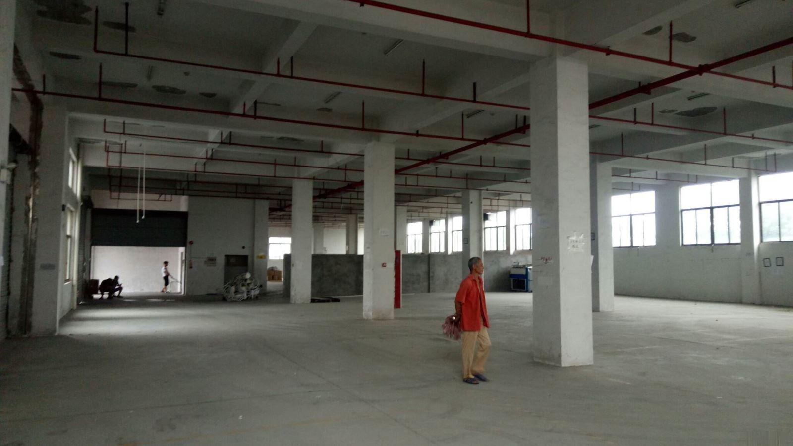 上溪工业区工厂出租一楼1400平,标准厂房全框架实拍