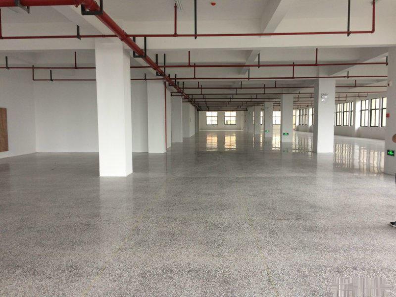 稠江5000平厂房出租,主干道2-4层 每层1700 可分租