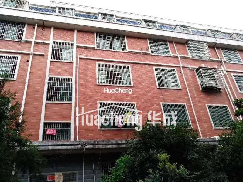 上溪镇繁华路段 国有土地垂直楼 位置好 租金高 满两年