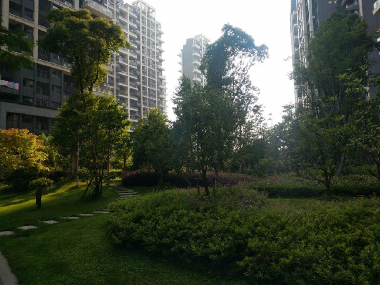 丹桂苑 简装 低于市场狂甩价 位置好 房东包税 看房方便