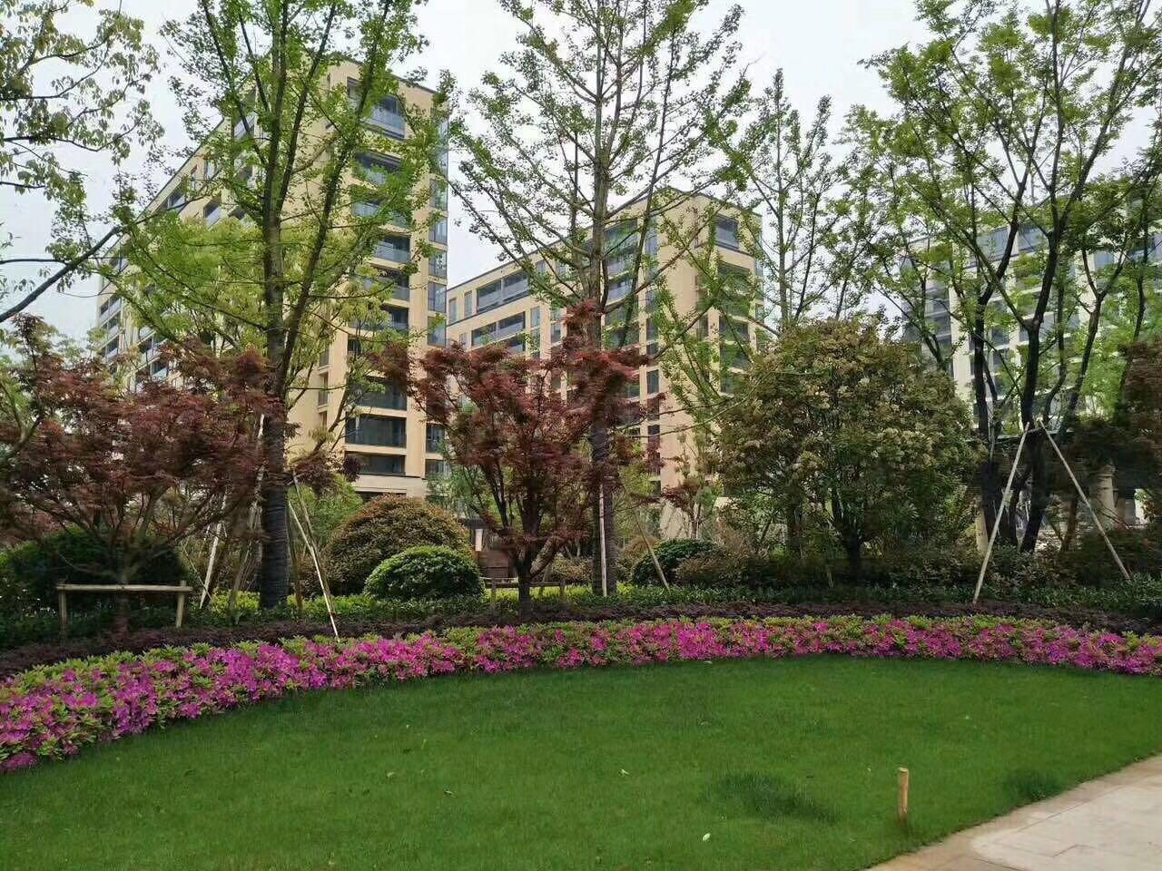 安福家园义乌后花园最具潜力绿城品质现房多套钥匙房