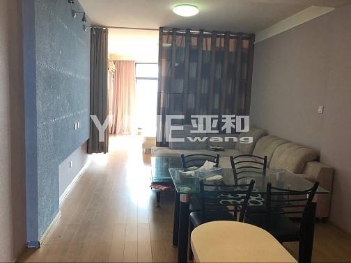 江滨小学 城南中学优质学区房 小面积挂学区神器白金公寓55平