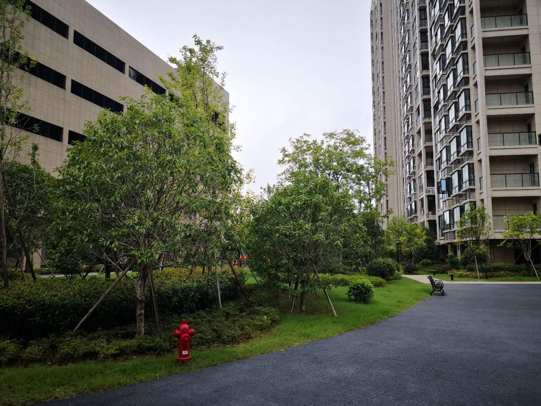 新科花园东边套 靠河位置好 满两年 送车库 带电梯