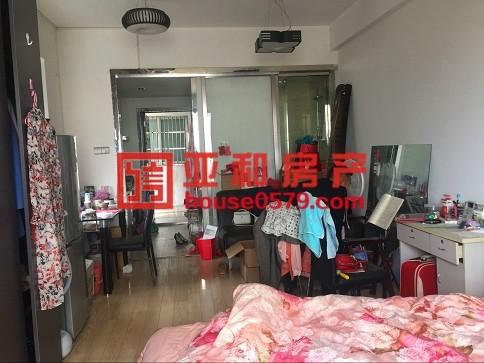 (新马路公寓)绣湖双学区 小面积挂学区神器 好出租!