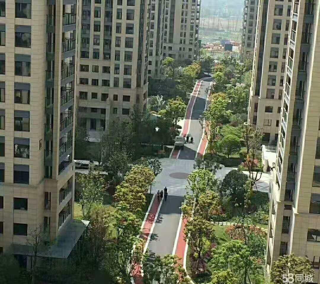 城市花园 62平 138万 绣小分校、北苑中学 全新装修、高