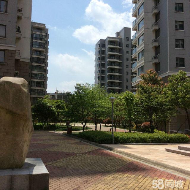 解放新苑 绣湖双学区 高层带物业 两居室 290万包出让金