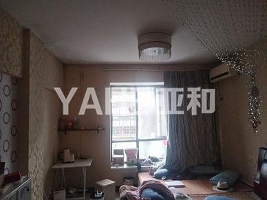 阳光都市公寓 小面积50平 单身公寓 总价低 投资少 回报高