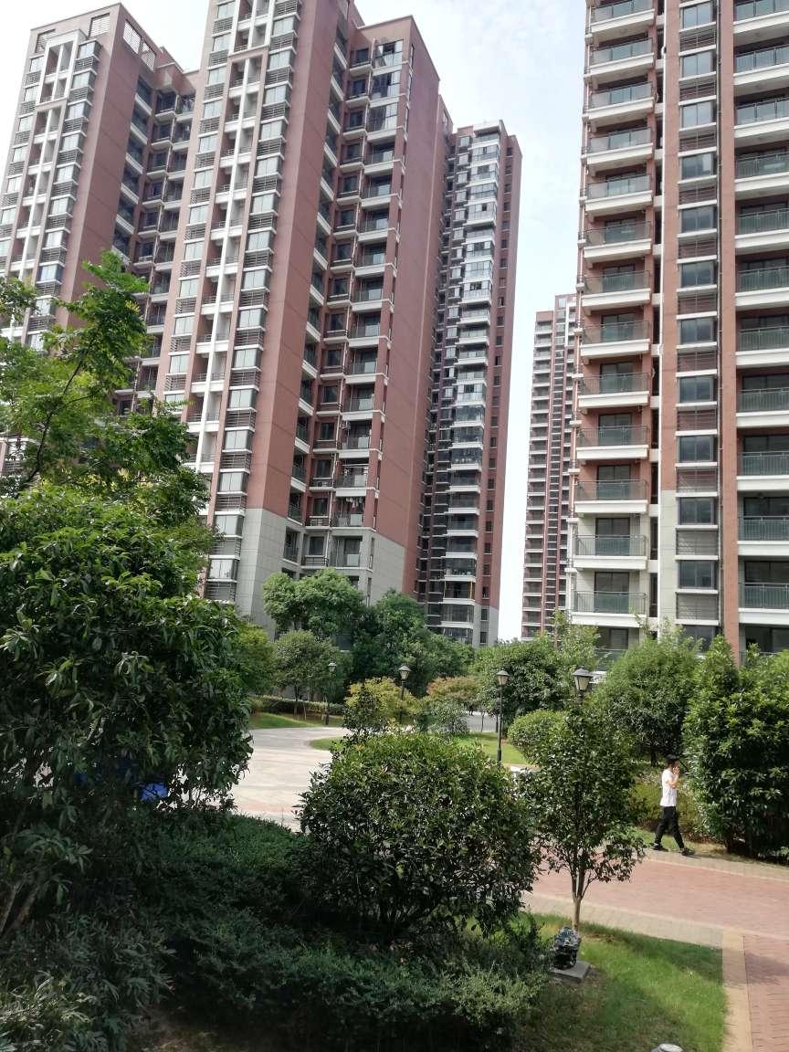 首付40万内买双江湖边框架新房标准2室来即看非诚勿扰