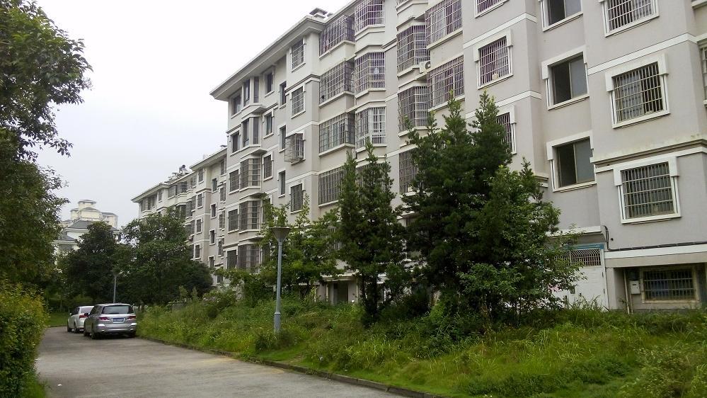 东洲花园 首付70万左右实惠3房急售看房有钥匙